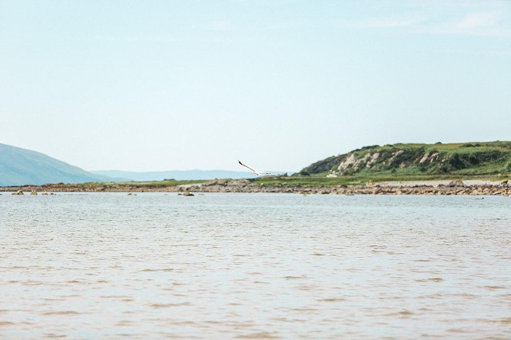 The Gibsons,beach engagement shoot scotland,engagement shoot Scalpsie beach,engagement shoot isle of bute,romantic photographers Scotland,visit scotland,